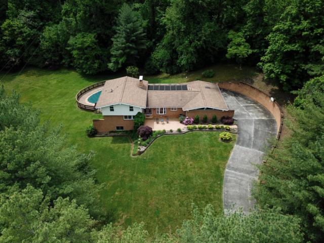 158 Castle Heights Drive, Newport, TN 37821 (#1041284) :: SMOKY's Real Estate LLC