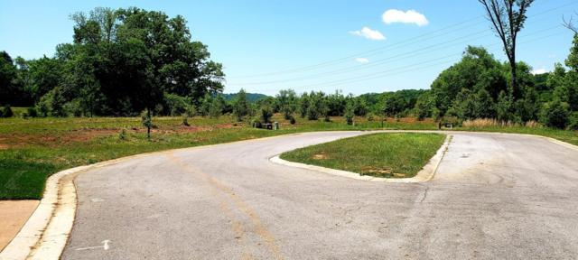 1279 Buckhorn Way, Loudon, TN 37774 (#1041534) :: Billy Houston Group