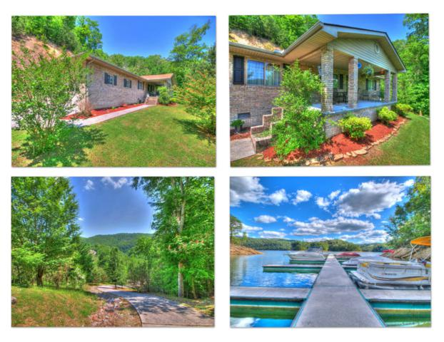 454 Wildcat Hollow Rd, New Tazewell, TN 37825 (#1041592) :: Shannon Foster Boline Group
