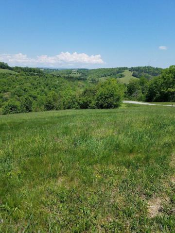 Lot 210 Jade Lane, New Tazewell, TN 37825 (#1041976) :: Billy Houston Group