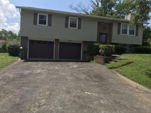 105 Howell Circle, Maryville, TN 37803 (#1042107) :: Billy Houston Group