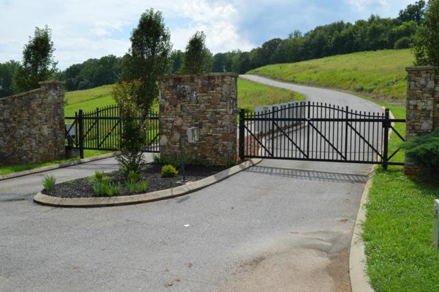 Hummingbird Lane, Decatur, TN 37322 (#1042264) :: Billy Houston Group