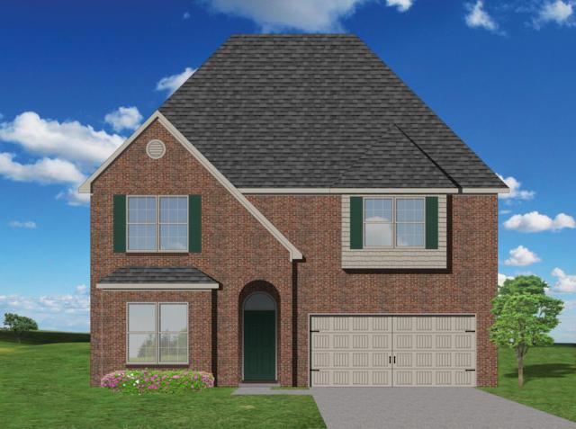 12427 Cotton Blossom Lane, Knoxville, TN 37934 (#1042477) :: Billy Houston Group