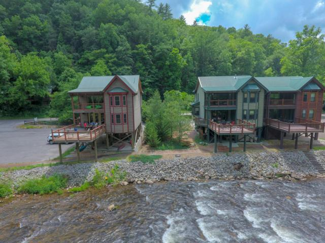 1659 Cherohala, Tellico Plains, TN 37385 (#1042661) :: Billy Houston Group