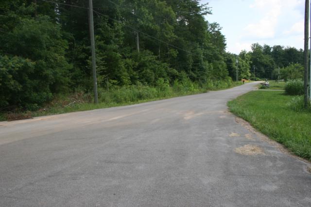 Baker Farm Rd, Tellico Plains, TN 37385 (#1042708) :: Billy Houston Group