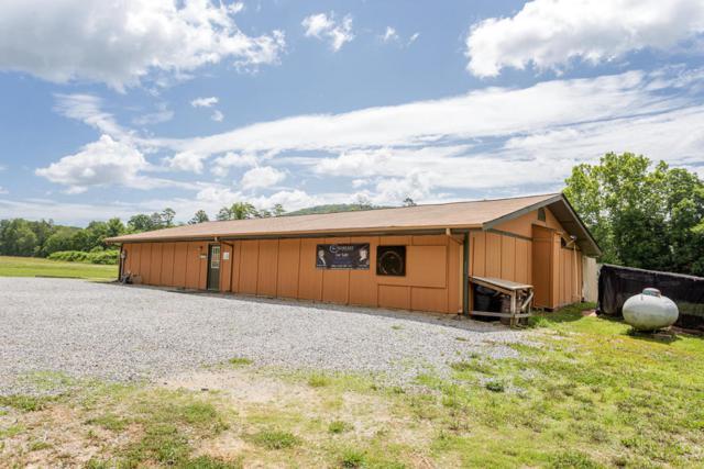 1301 Mecca Pike, Tellico Plains, TN 37385 (#1042734) :: SMOKY's Real Estate LLC