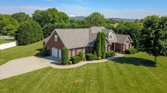 3709 Andrew Boyd Drive, Maryville, TN 37804 (#1043563) :: Billy Houston Group