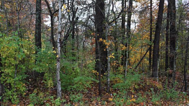 Mockingbird Drive, Crossville, TN 38555 (#1043840) :: Billy Houston Group