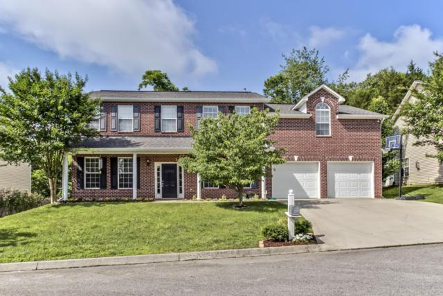 7609 Misty View Lane, Knoxville, TN 37931 (#1043956) :: Billy Houston Group