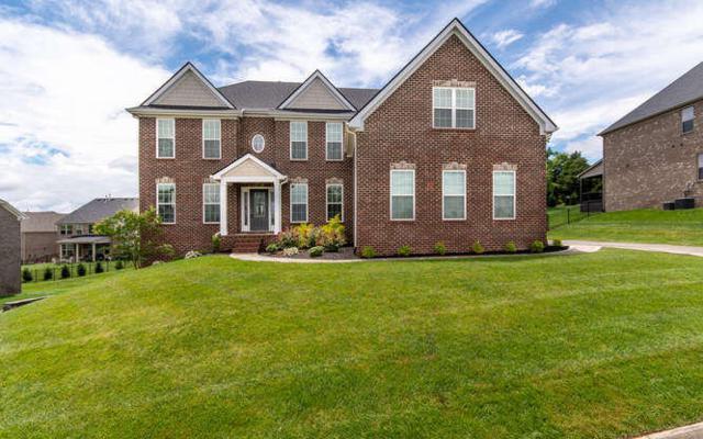 1620 Charlottesville Blvd, Knoxville, TN 37922 (#1044002) :: Shannon Foster Boline Group