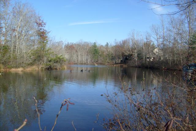 4080 Lone Wolf Circle, Crossville, TN 38572 (#1045101) :: Billy Houston Group