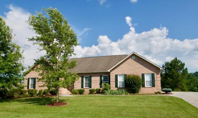 1120 Cobble Way, Maryville, TN 37803 (#1045163) :: Billy Houston Group