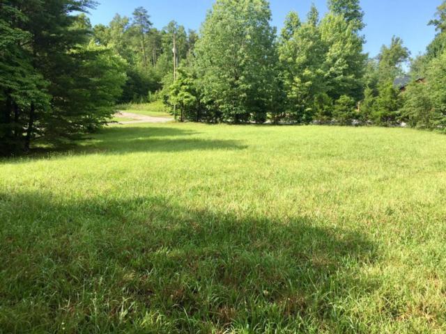 Pine Loop Rd, Madisonville, TN 37354 (#1045295) :: Billy Houston Group