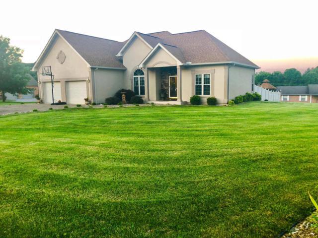 182 El Sara Drive, New Tazewell, TN 37825 (#1045955) :: Billy Houston Group