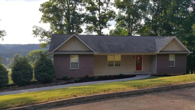 839 Trinity View Circle, Seymour, TN 37865 (#1046271) :: Billy Houston Group