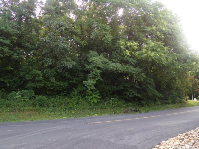 297 Dudala Way, Loudon, TN 37774 (#1046517) :: Billy Houston Group