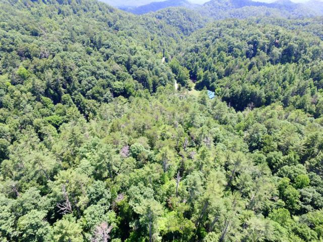 Lot 2 Carrs Creek, Townsend, TN 37882 (#1047348) :: Billy Houston Group