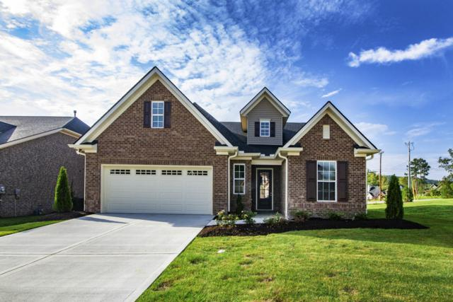 Lot 13 Choto Meadows Ln, Knoxville, TN 37922 (#1047712) :: Billy Houston Group