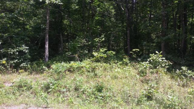 36 Broken Arrow Drive, Crossville, TN 38572 (#1047728) :: Shannon Foster Boline Group
