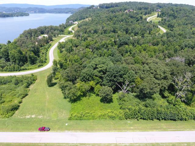 Water View Drive, Rockwood, TN 37854 (#1048186) :: Billy Houston Group