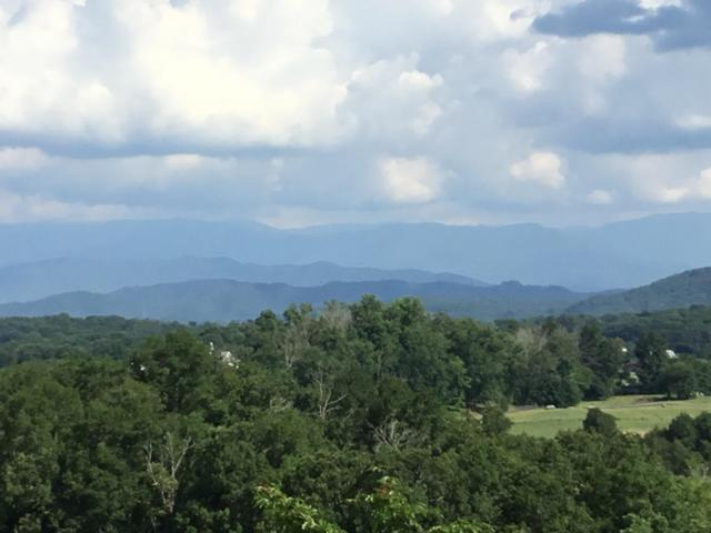 Lot 10 & 11  Megan Ridge Drive, Sevierville, TN 37862 (#1048806) :: Billy Houston Group