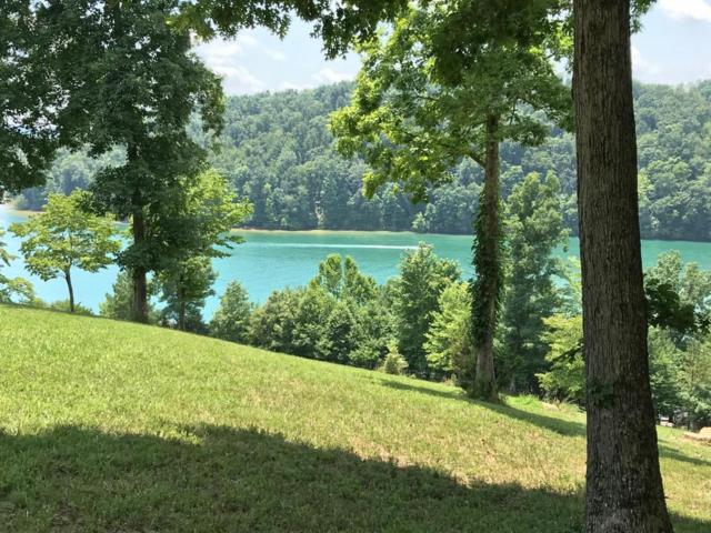 Deer Ridge Ln Lot 6, LaFollette, TN 37766 (#1049010) :: SMOKY's Real Estate LLC
