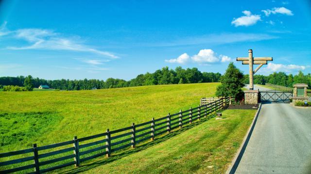 Leatherwood Ford Rd, Jamestown, TN 38556 (#1049340) :: Billy Houston Group