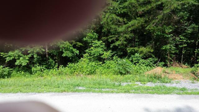 179 Elokwa Way, Loudon, TN 37774 (#1049466) :: Billy Houston Group