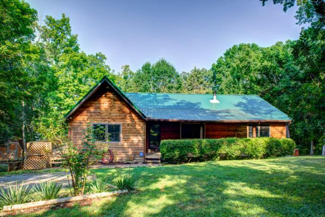 658 Cape Norris Rd, New Tazewell, TN 37825 (#1049975) :: Billy Houston Group