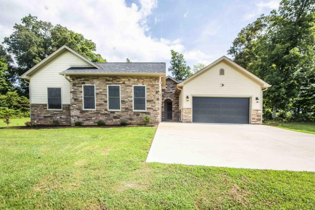 2005 River Mist Circle, New Market, TN 37820 (#1050750) :: Billy Houston Group