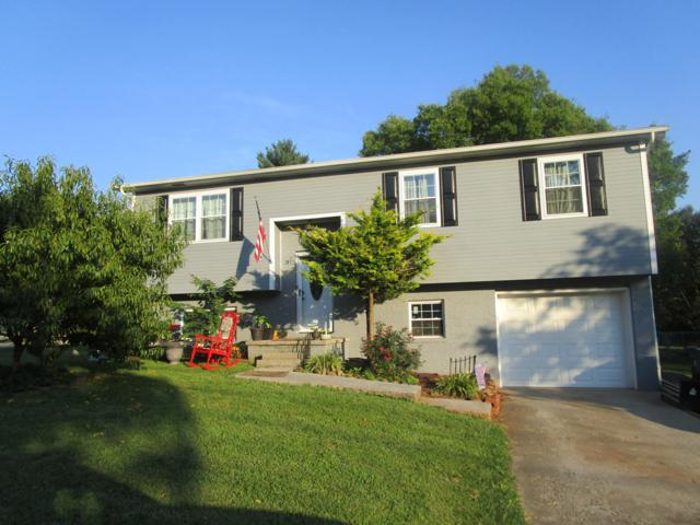4128 Deer Creek Drive, Knoxville, TN 37912 (#1051050) :: Billy Houston Group