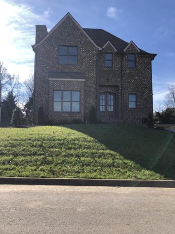 Lot 17 Daisy Field Lane, Knoxville, TN 37934 (#1051284) :: Billy Houston Group