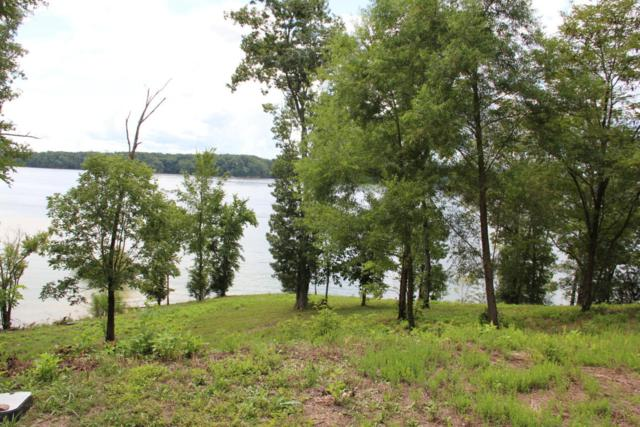 Lot 67 Stone Bridge Drive, Dandridge, TN 37725 (#1051414) :: Shannon Foster Boline Group