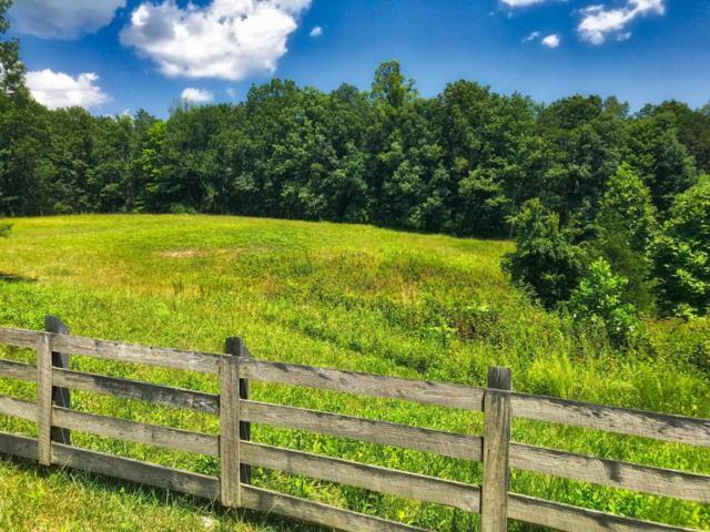 Leatherwood Ford Rd, Jamestown, TN 38556 (#1051531) :: Billy Houston Group
