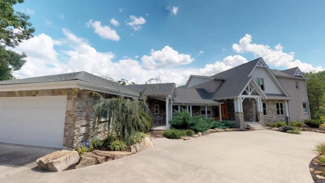 163 Kelly Ridge Rd, Townsend, TN 37882 (#1051537) :: SMOKY's Real Estate LLC
