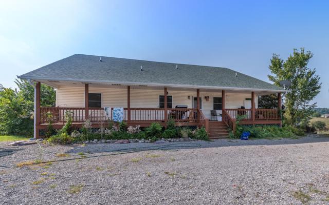 795 Zirkle Road Rd, Dandridge, TN 37725 (#1051566) :: Billy Houston Group