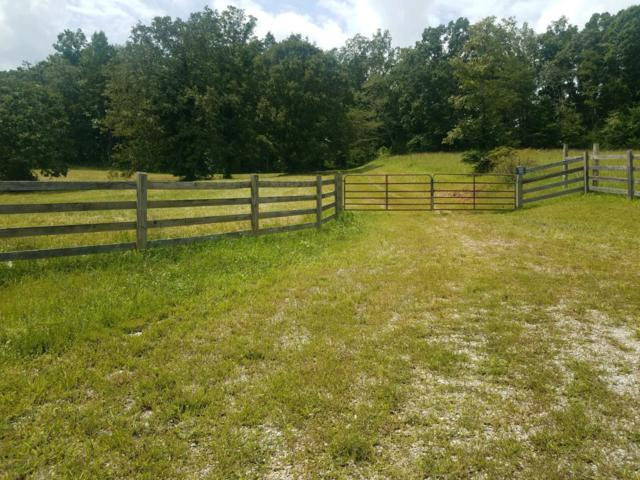 5016 Decatur Hwy, Ten Mile, TN 37880 (#1051700) :: Billy Houston Group
