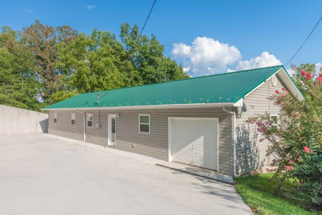 497 Dogwood Acres, LaFollette, TN 37766 (#1051781) :: Billy Houston Group