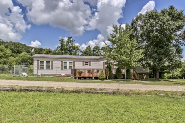 110 Duran Trail, Ten Mile, TN 37880 (#1052066) :: Venture Real Estate Services, Inc.