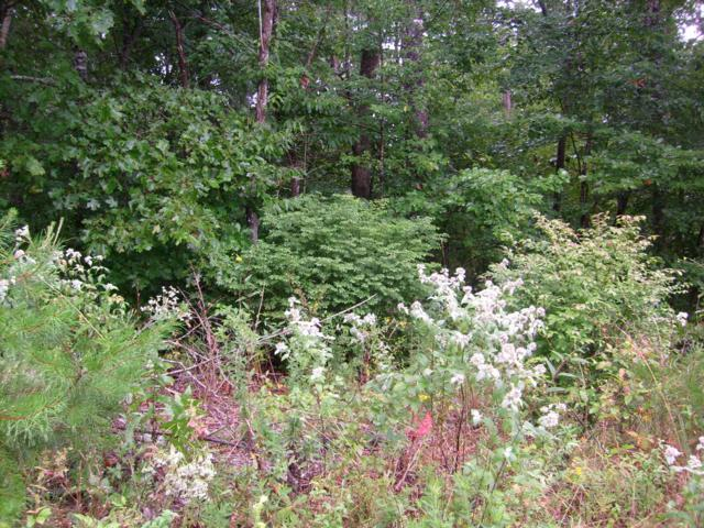 Spruce Loop, Crossville, TN 38555 (#1052107) :: Billy Houston Group