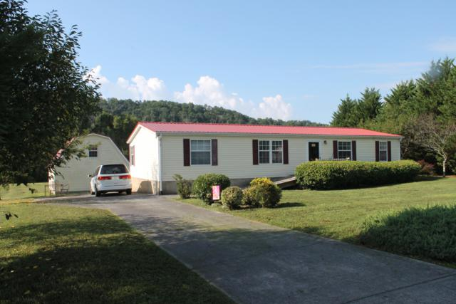 2036 River Meadows Drive, Sevierville, TN 37876 (#1052114) :: Billy Houston Group