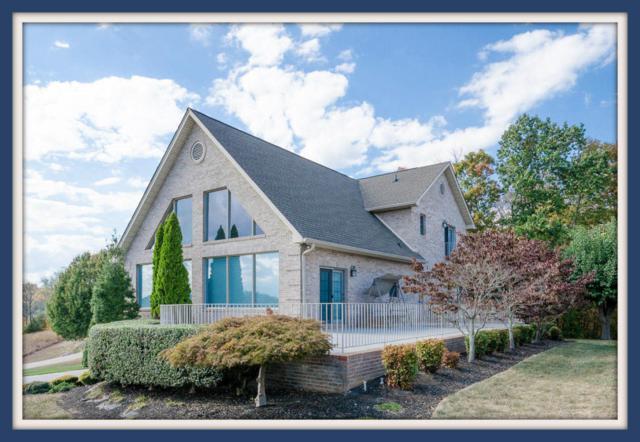 510 Riverchase Lane, Dandridge, TN 37725 (#1052799) :: Billy Houston Group