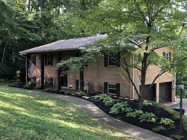 5615 Crestwood Drive, Knoxville, TN 37914 (#1052833) :: Billy Houston Group