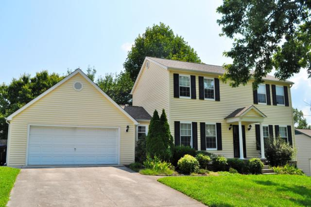 1820 Dunraven Drive, Knoxville, TN 37922 (#1052950) :: Billy Houston Group
