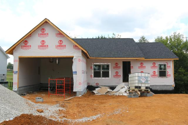 1110 Gregory Valley Drive, Sevierville, TN 37876 (#1053425) :: Billy Houston Group