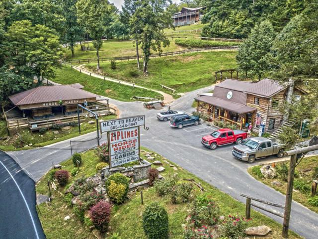 335 Wears Valley Rd, Townsend, TN 37882 (#1053694) :: The Creel Group | Keller Williams Realty