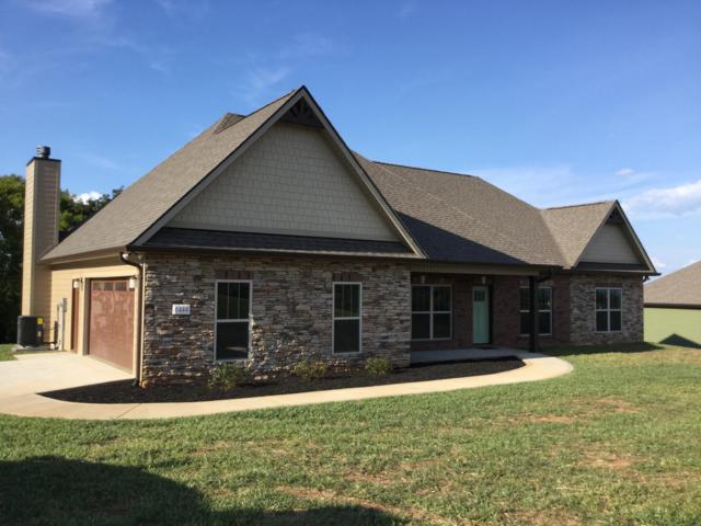 1444 Sally View Drive, Friendsville, TN 37737 (#1055588) :: Billy Houston Group