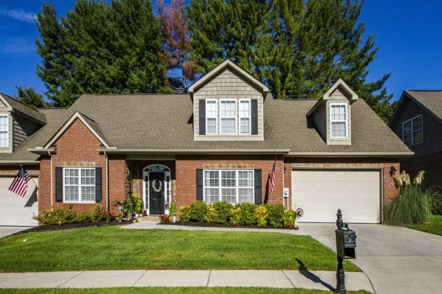 4225 Platinum Drive, Knoxville, TN 37938 (#1055595) :: Billy Houston Group