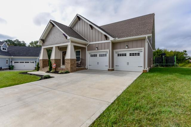668 Karch Drive, Maryville, TN 37803 (#1055690) :: Billy Houston Group