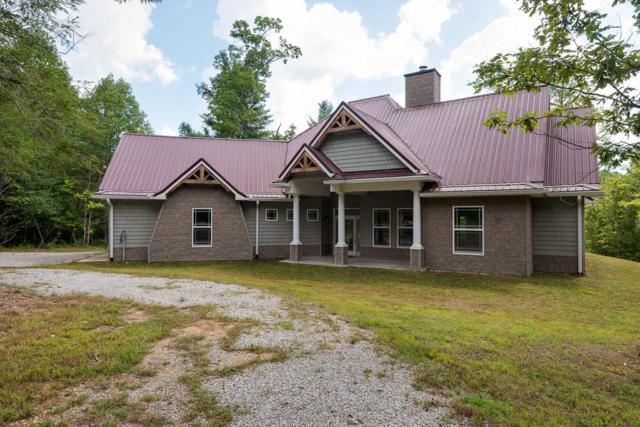 170 White Creek Court Court, Deer Lodge, TN 37726 (#1056102) :: Billy Houston Group